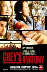 Greys Anatomy 9x16 Sub Español Online