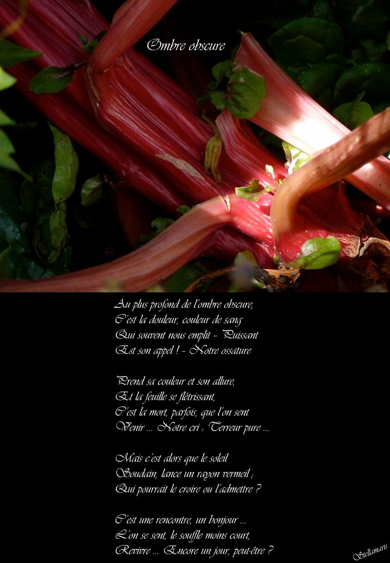 Ombre obscure / / Au plus profond de l'ombre obscure, / C'est la douleur, couleur de sang / Qui souvent nous emplit – Puissant / Est son appel ! – Notre ossature / / Prend sa couleur et son allure, / Et la feuille se flétrissant, / C'est la mort, parfois, que l'on sent / Venir … Notre cri : Terreur pure … / / Mais c'est alors que le soleil / Soudain, lance un rayon vermeil / Qui pourrait le croire ou l'admettre ? / / C'est une rencontre, un bonjour … / L'on se sent, le souffle moins court, / Revivre … Encore un jour, peut-être ? / / Stellamaris