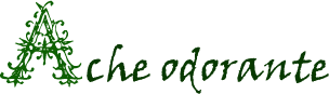 Ache odorante Ache_odorante-31c1889